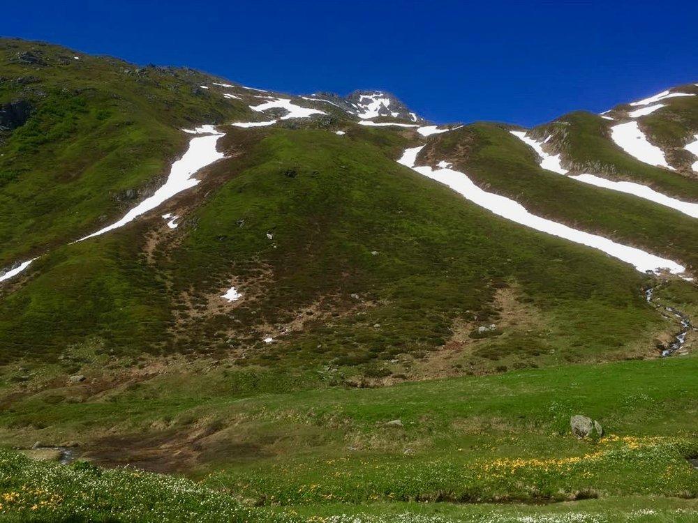 Swiss Alps near Tujetsch. (C) Remko Tanis