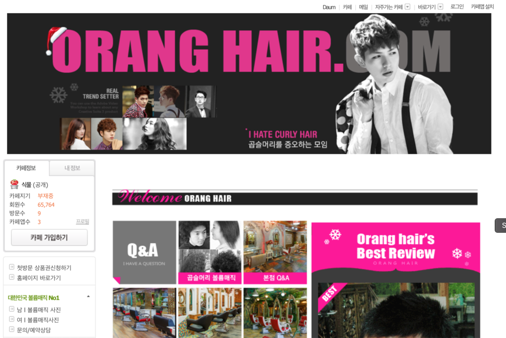 The  homepage  of Orang Hair.