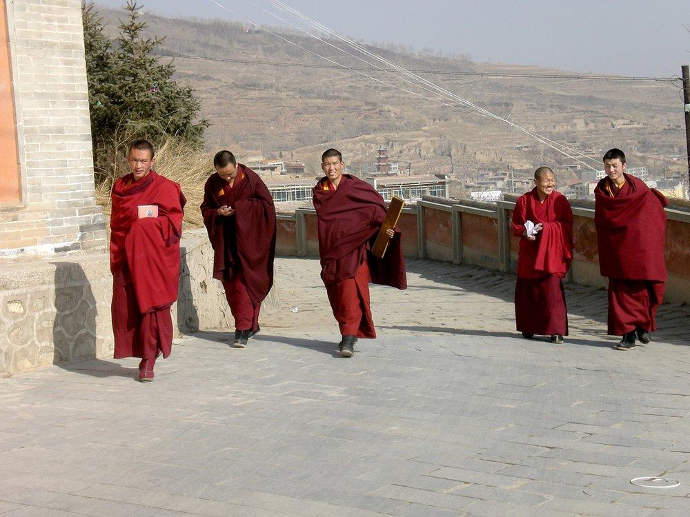 Tibetan monks at the Kumbum Ta'er monastery in Xining, capital of Qinghai province, China. Photo: (C) Remko Tanis