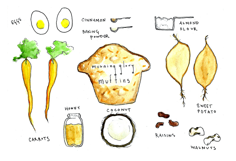 morning glory muffins_sketch.jpg
