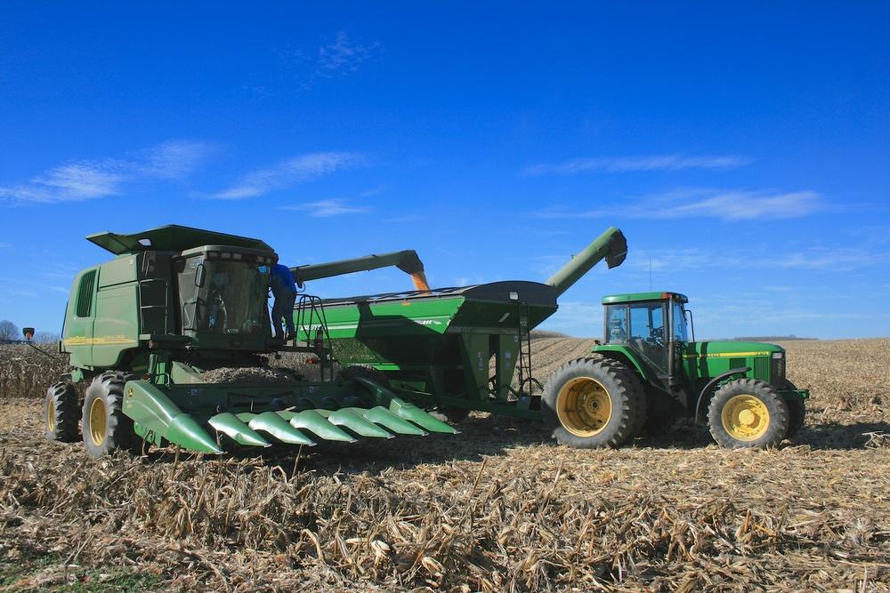 Unloading Corn