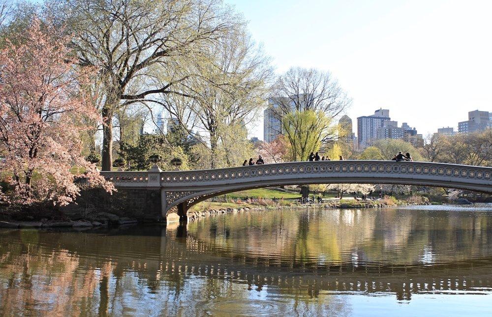 Bow Bridge Reflection