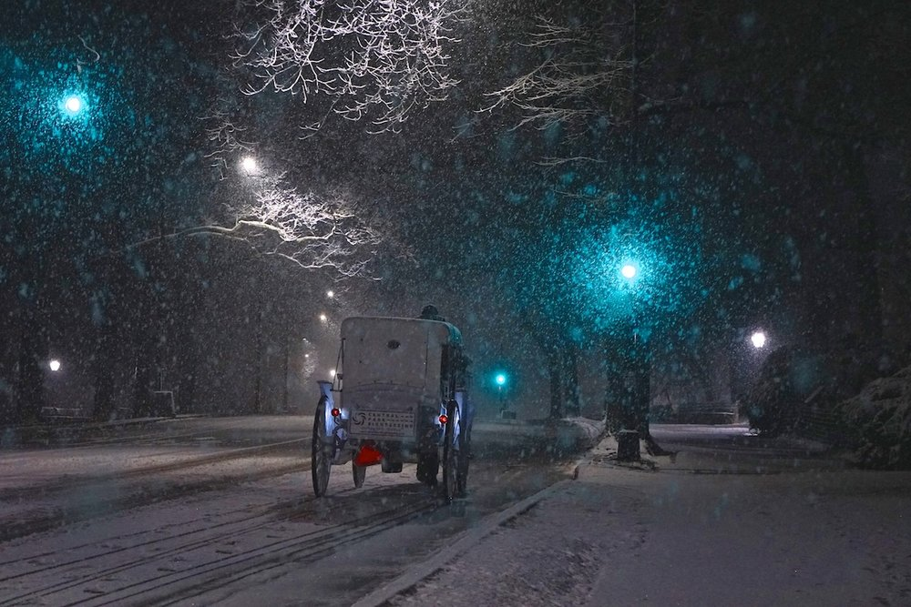 Romantic Carriage Ride, Central Park, NYC.
