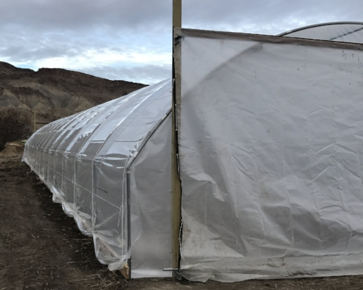 1 of 2 New High Tunnels! Early and late lettuce will be enjoyed as well as early tomatoes.