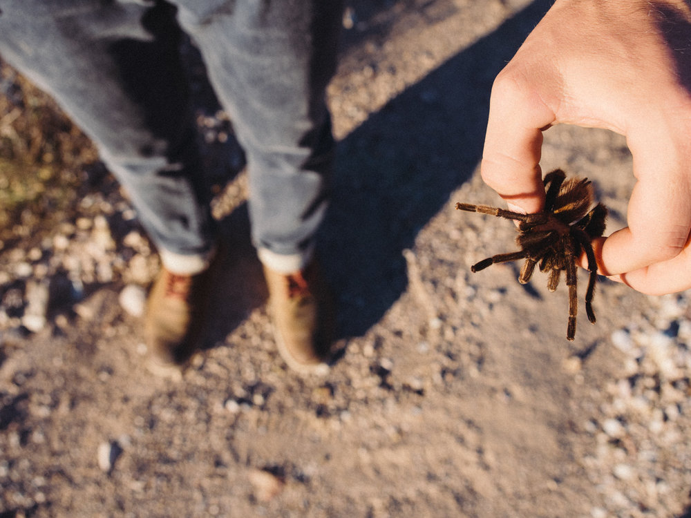 big bend national park texas tx camping hiking campvibes poler americayall america yall pawlowski jeremy taylor chisos mexico-35.jpg