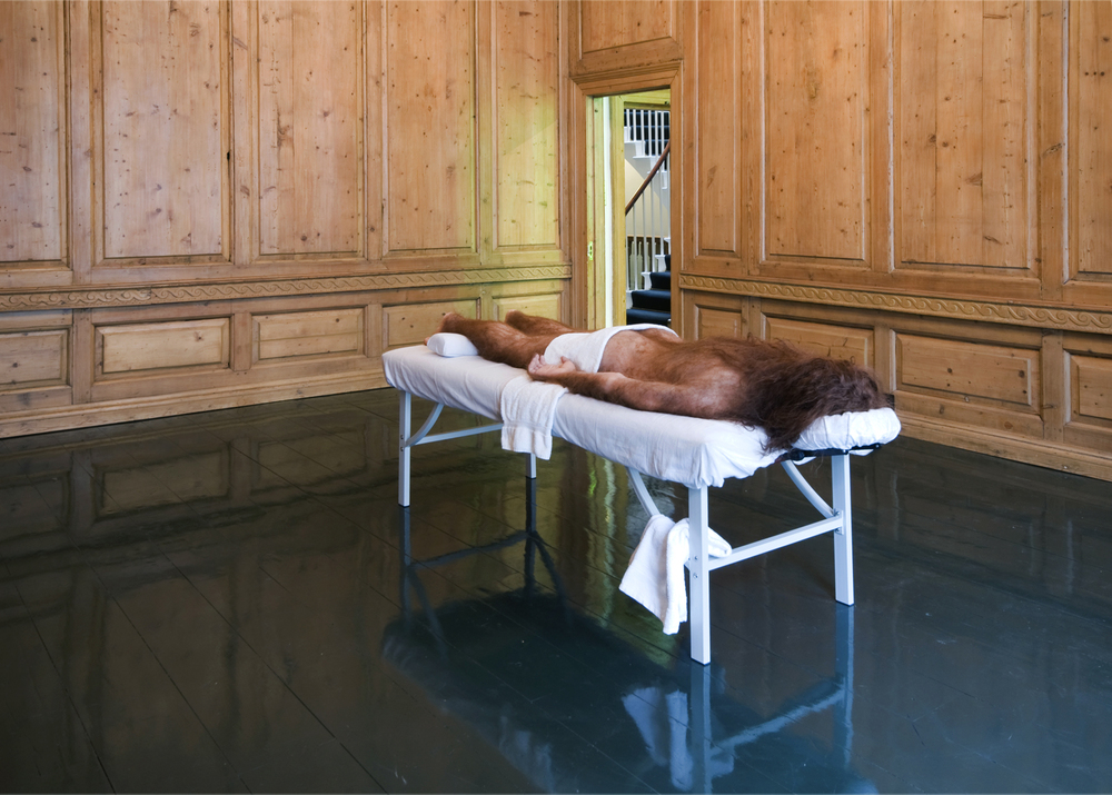 Untitled (Prelapsarian)  2012  Anatomical model on massage table  approx 90 x 92 x 213 cm / 35.4 x 36.2 x 83.5 in