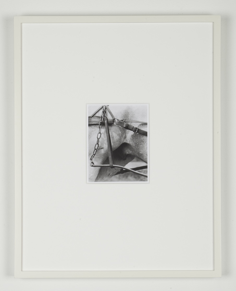 Simon Martin Untitled (After Alfred Stieglitz) 2009-2011 Silver gelatin print 41 x 32 cm / 16.1 x 12.5 in