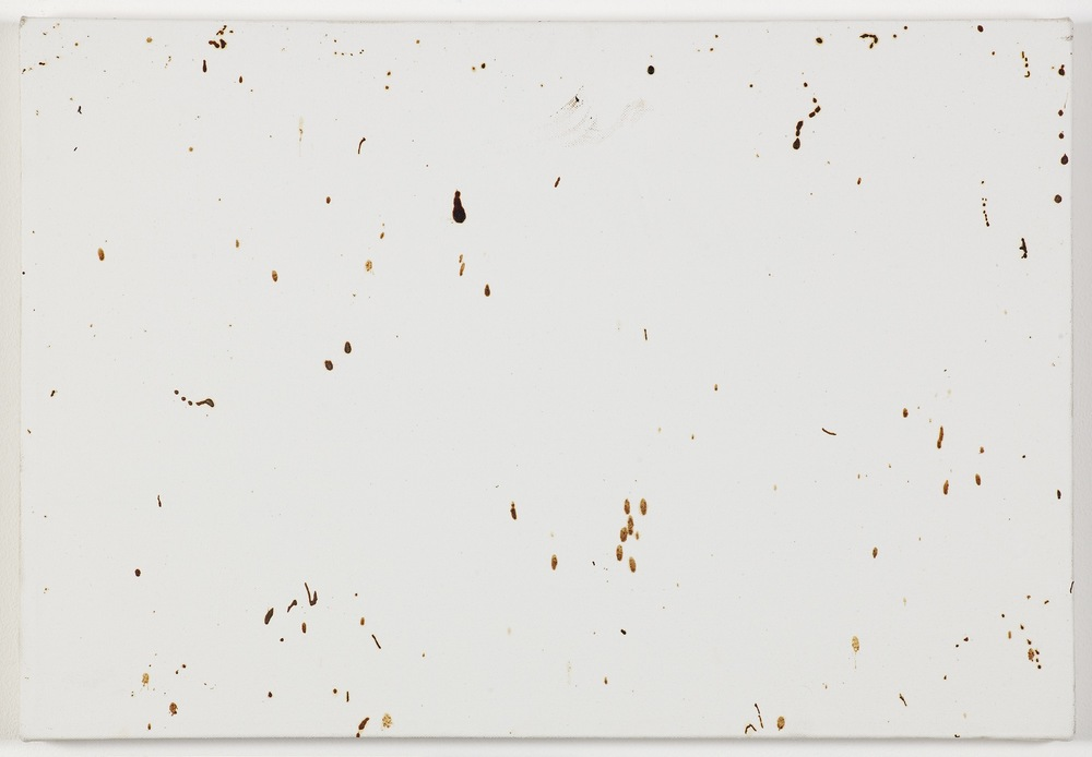 Bee Painting, Small Screen I 2009 Bee droppings on grounded canvas 41 x 60 cm