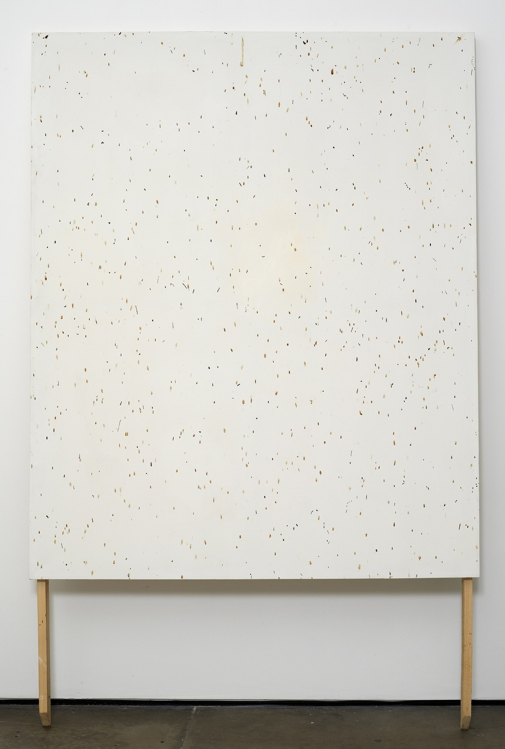 Bee Painting, Large Screen IV 2009 Bee droppings on grounded canvas 148 x 120 cm