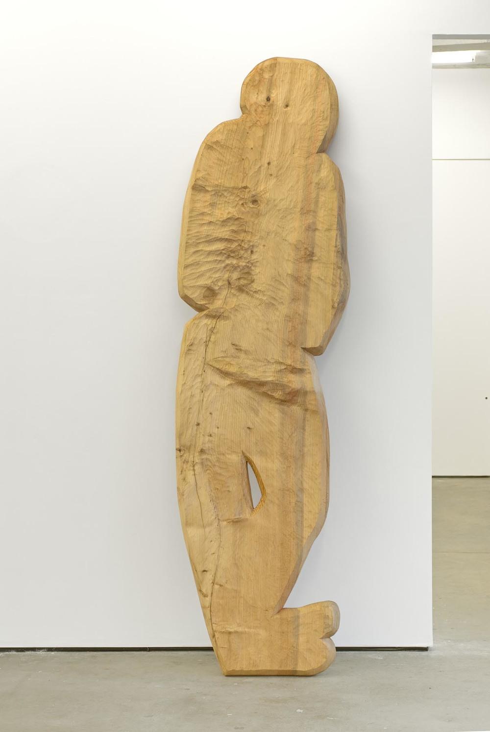 Figure 2 2007 cedar of Lebanon 254 x 73 x 10 cm