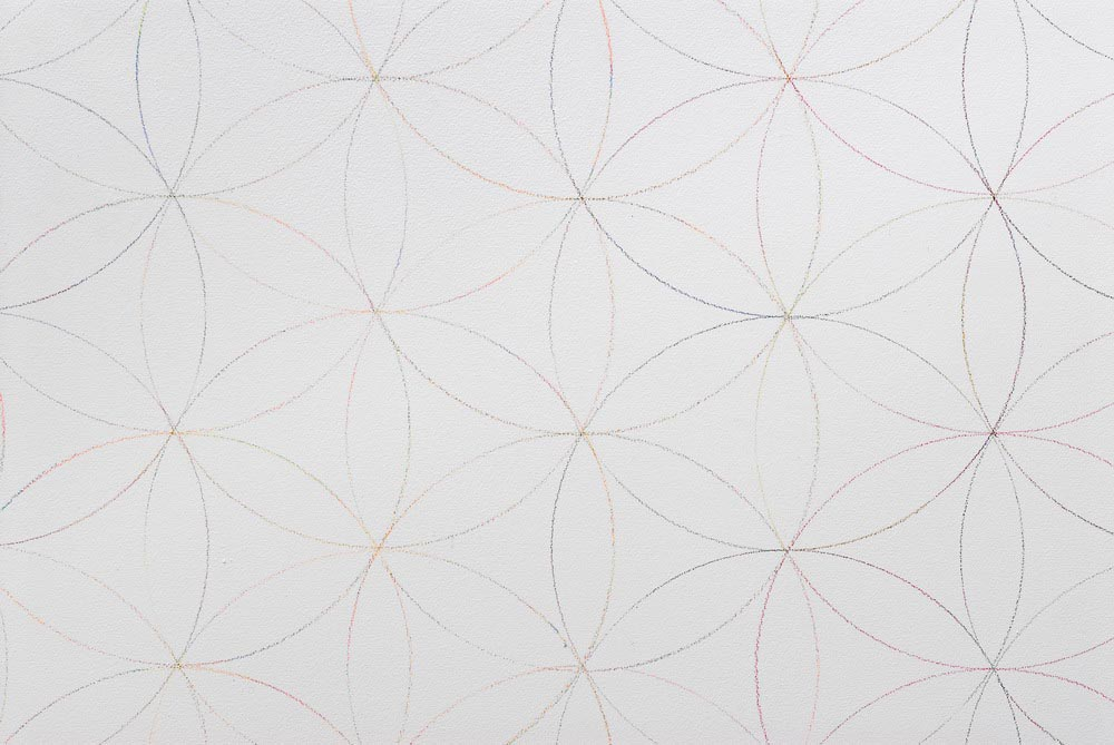 Untitled (Wall Drawing/ Markaba Rose) 2007 Coloured Pencil on Wall Dimensions Variable
