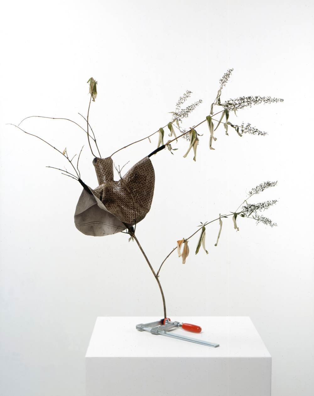 Dancer 2005 dried Buddleia, clamp, leather & fabric 78cm x 59cm x 86cm
