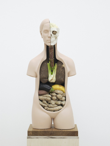 Veggieanatomy   2011   Vegetables, jesmonite, paint, wood   183 x 25.4 x 39 cm / 72 x 10 x 15.3 in