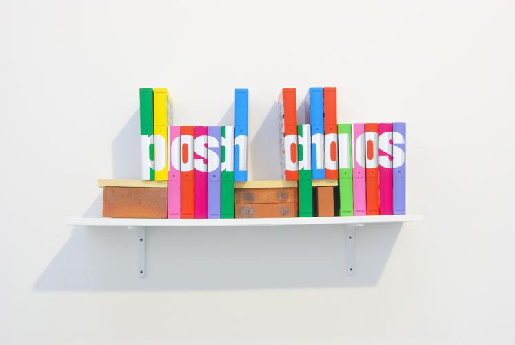 Posh Chaos 2008 Domus books, shelf, bricks, wood