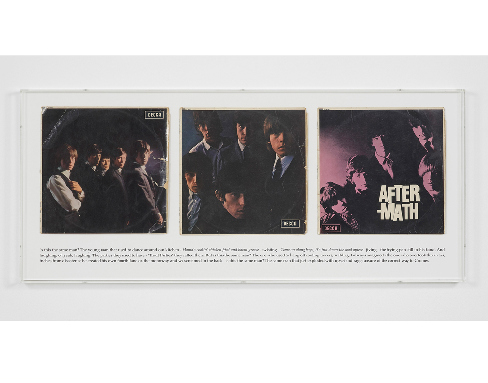 A History of Music (Power Station Dad) 2012 Album covers, screenprint, perspex frame 47 x 107.5 cm / 18.5 x 42.3 in