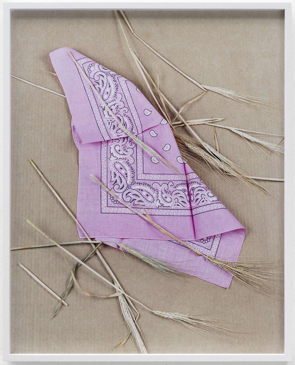 Paisley and Wheat Pink c-print, framed 2013 58.5 x 46.7 cm 4/6 + 2AP