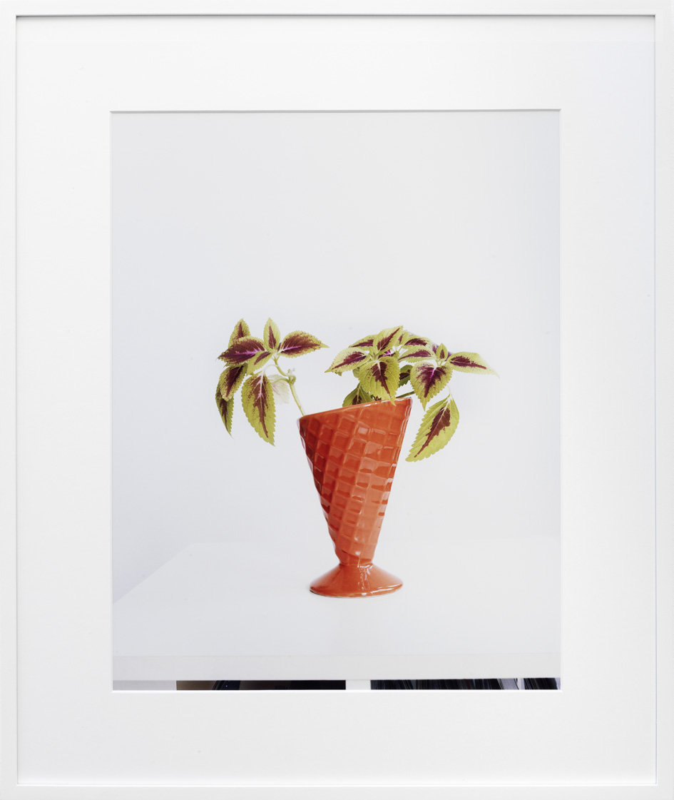 Untitled (Buntnessel 2) c-print, framed 2011 50 x 38.5 cm 4/5 + 2AP