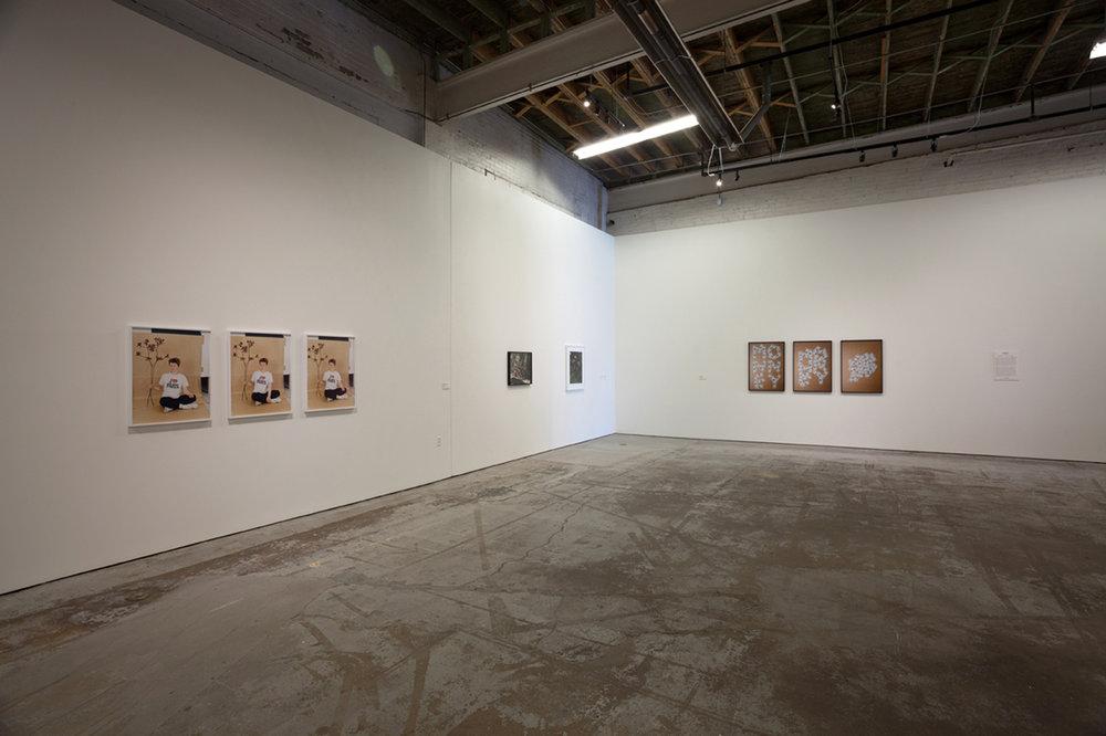 Annette Kelm Installation View MOCAD, Detroit,US 2016