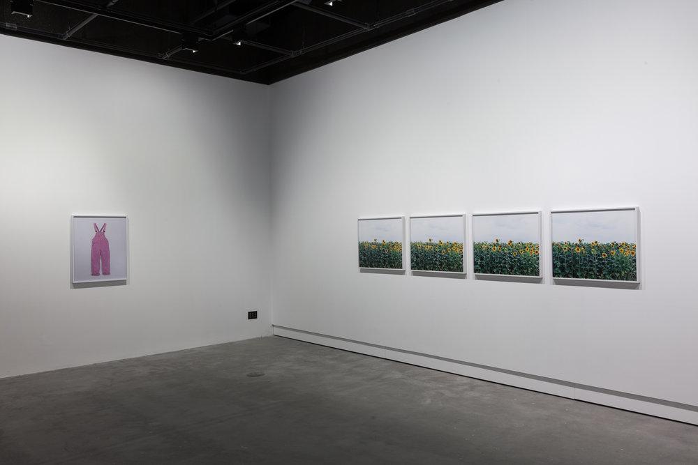 Annette Kelm Installation View VOX, Montreal, CA 2016