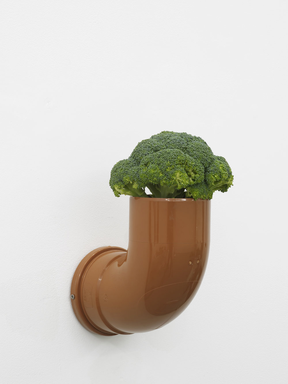 Catachresis ♯69 Head of the broccoli and elbow of the pipe 2016 Found materials 29 x 20 x 25 cm / 11.4 x 7.9 x 9.8 in