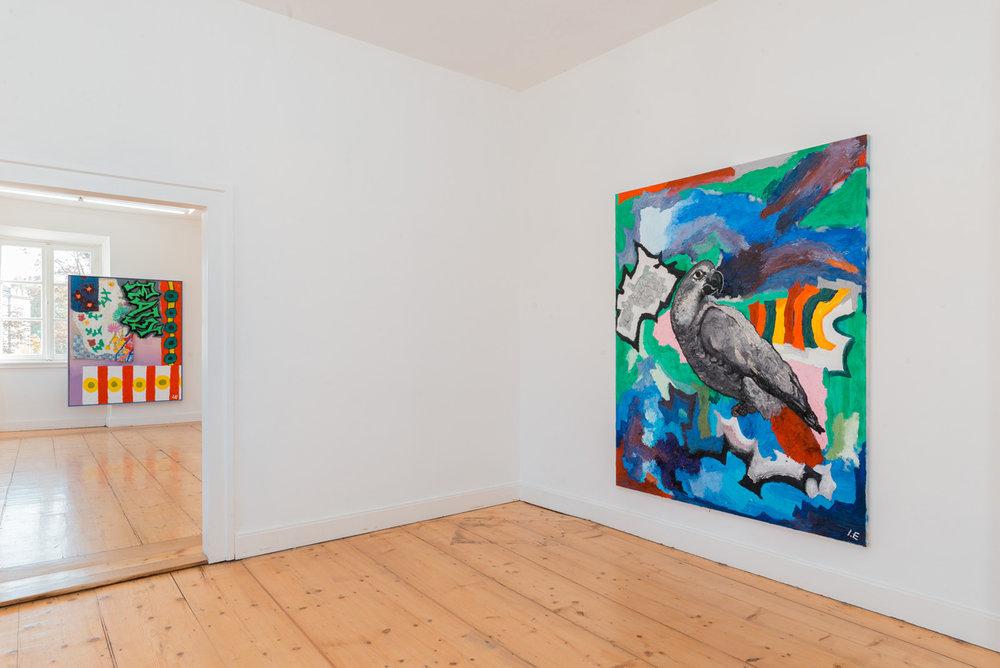 Installation view Kunstverein Braunschweig, Braunschweig, DE 2018