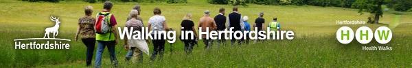 Walking in Herts.jpg
