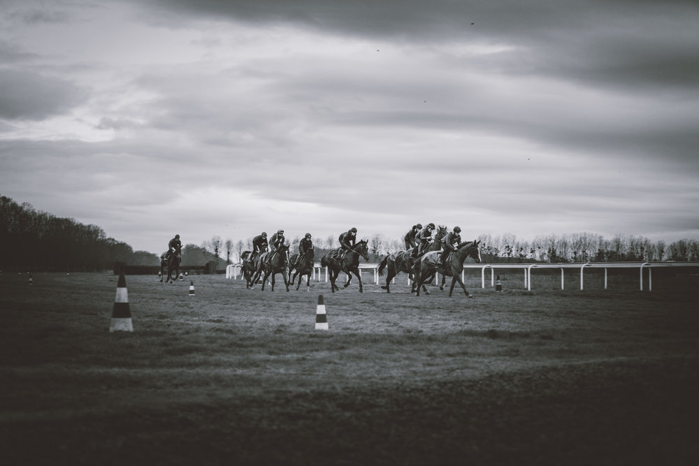 France Galop 15-03-18 © Florian Léger- SHARE & DARE-3 - Copie.jpg