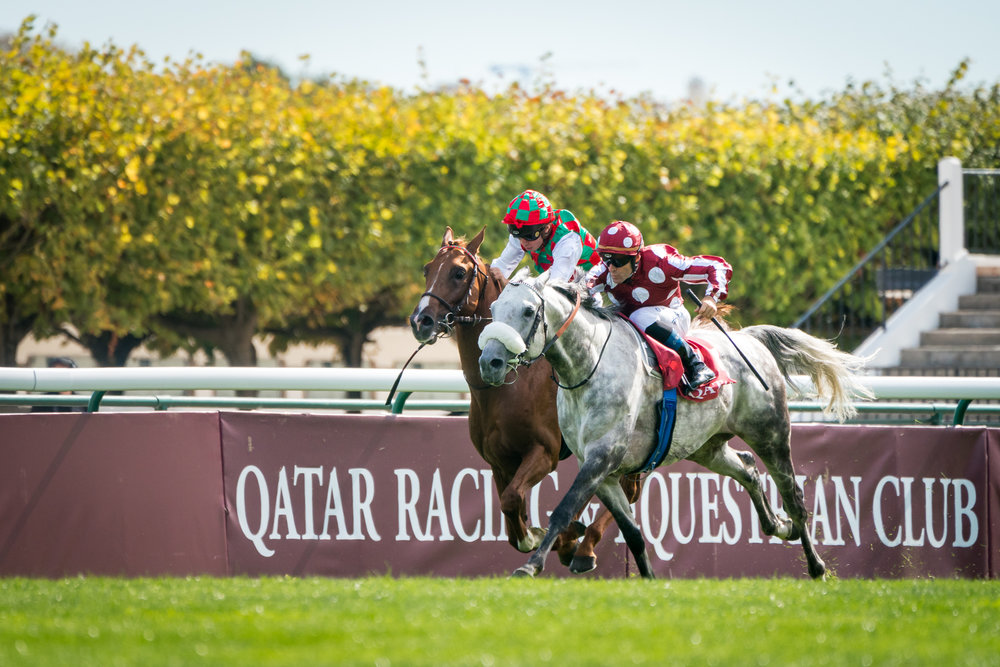 Qatar Arc Trials 16-09-18 © Florian Léger - SHARE & DARE-19.jpg