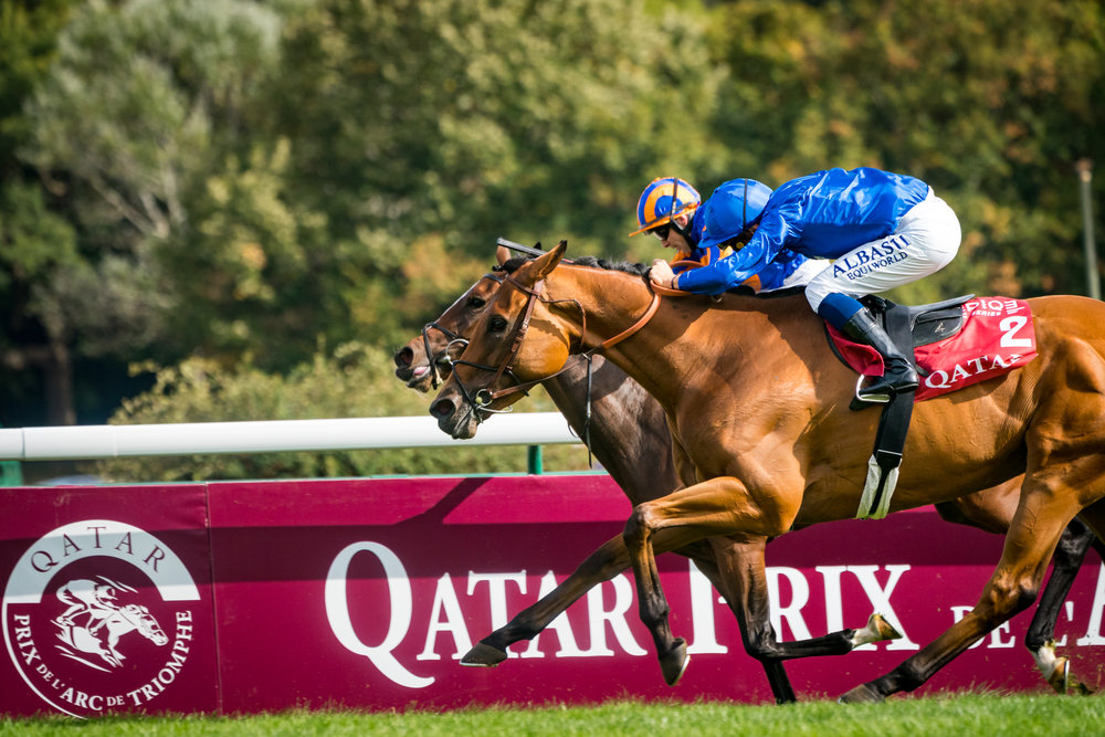 Qatar Arc Trials 16-09-18 © Florian Léger - SHARE & DARE-77.jpg