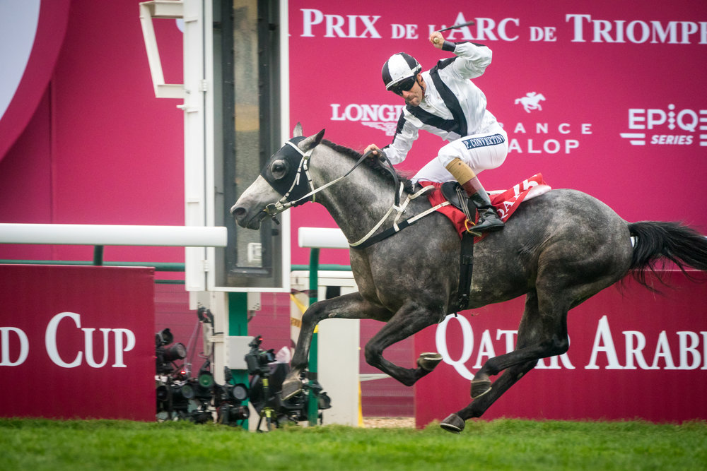QPAT2018_Florian Leger - SHARE & DARE-104.jpg