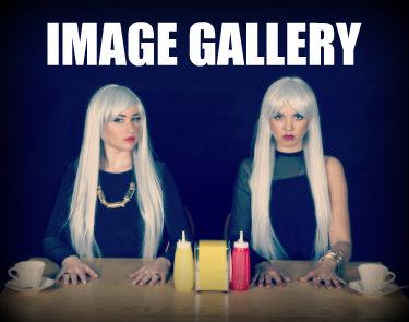 IMAGE GALLERY.jpg