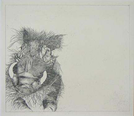 Untitled (warthog)