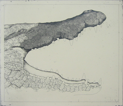 Untitled (crocodile)