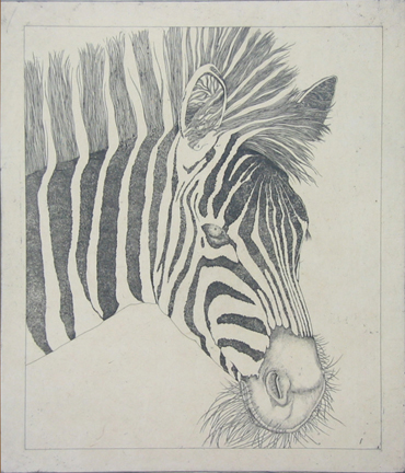 Untitled (zebra)