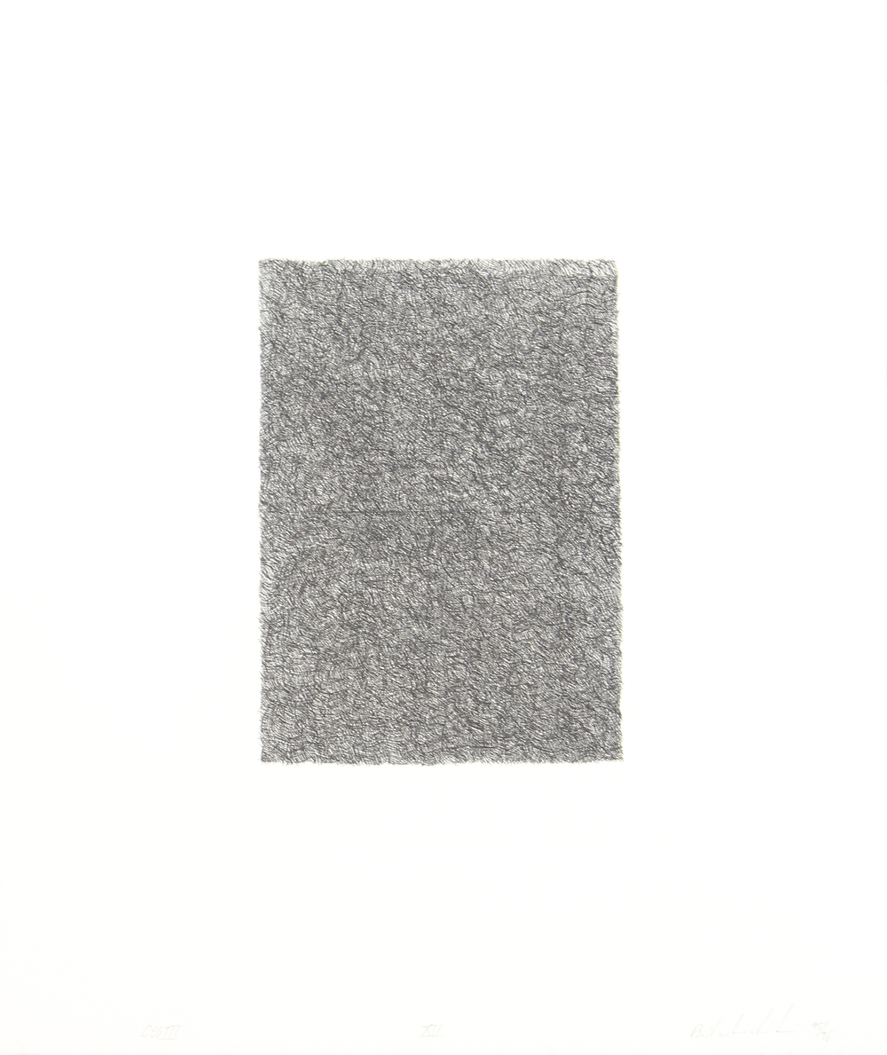 Quantum Gray XII