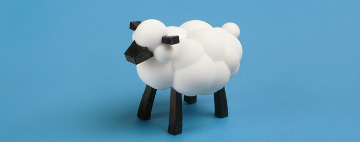 Carla and LEO's sheep