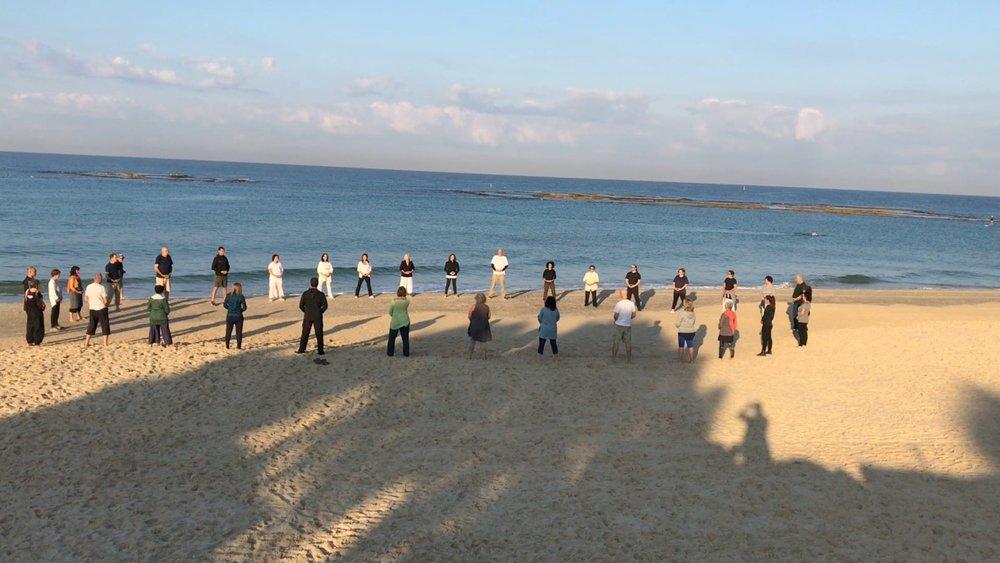 Sheng Zhen Teacher Training Israel 2017