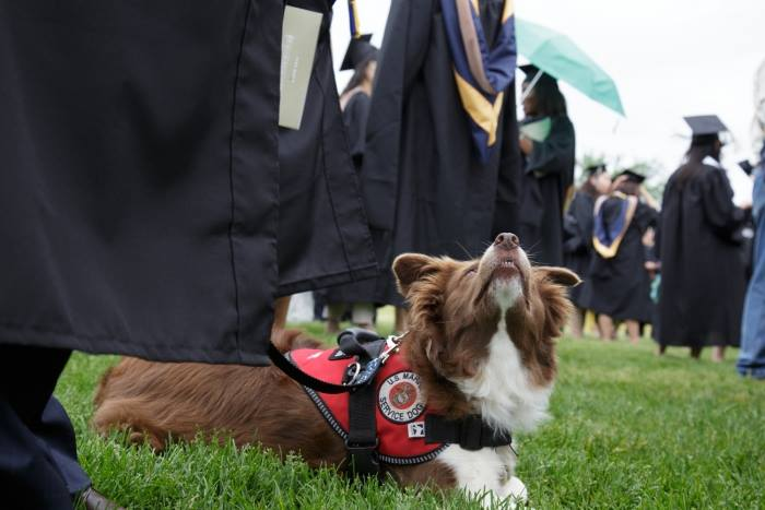 GW Veteran, Oliver (Ryan Dirksen) at the 2015 Commencement.