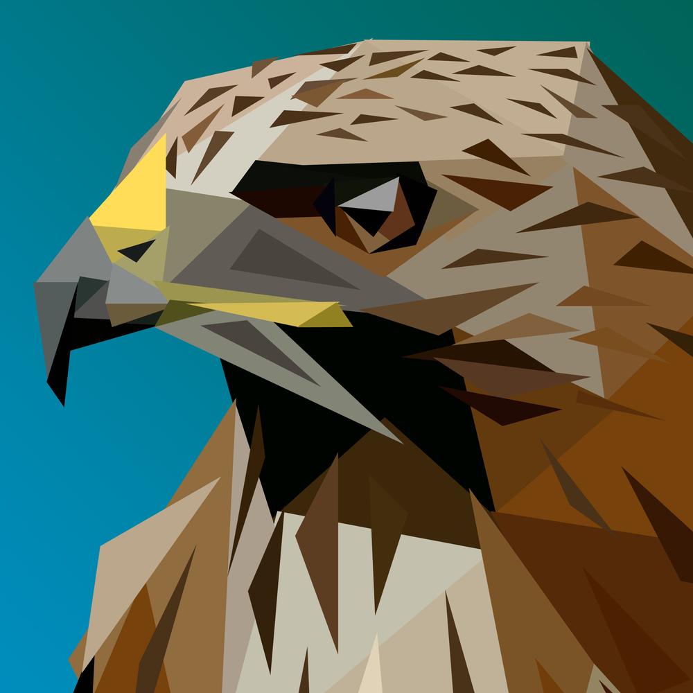 Tristan's Hawk