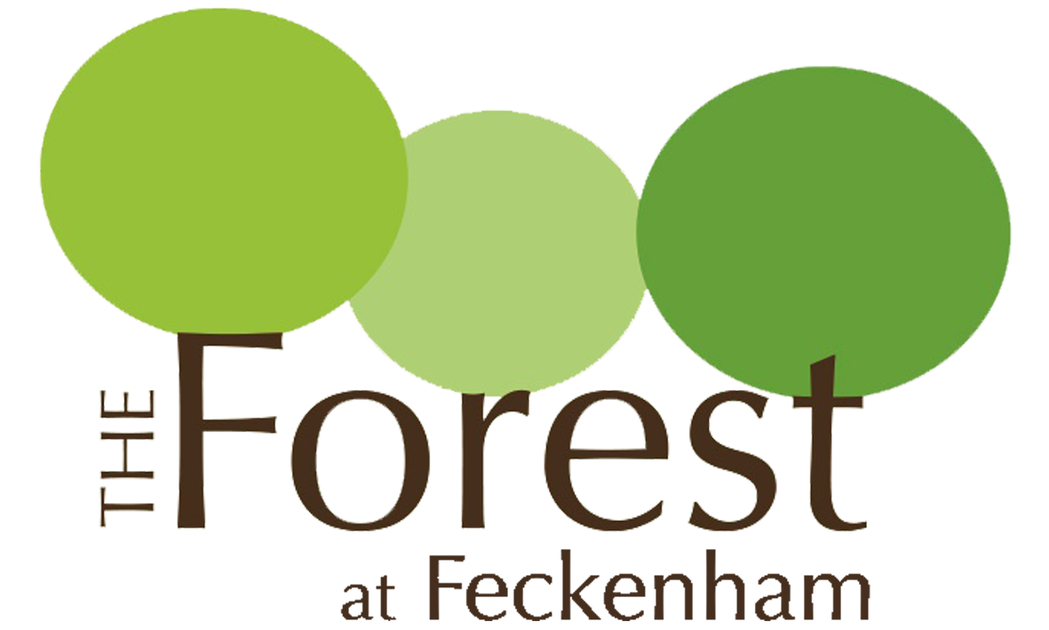 The Forest at Feckenham