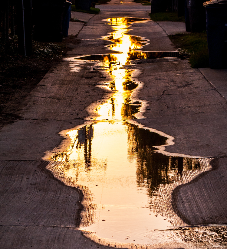 1012012Puddle-in-My-Alley