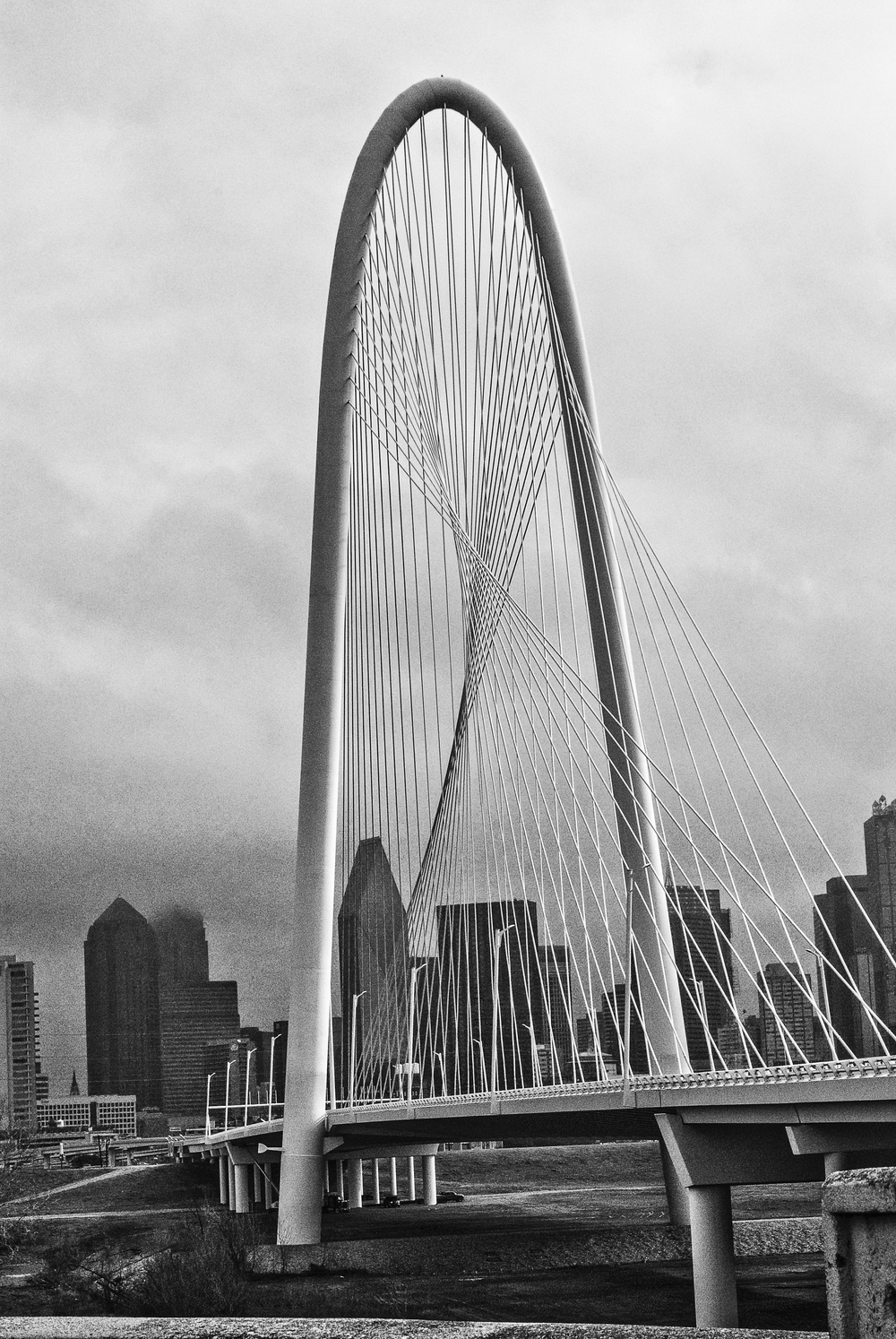 Dallas Shots-4.jpg