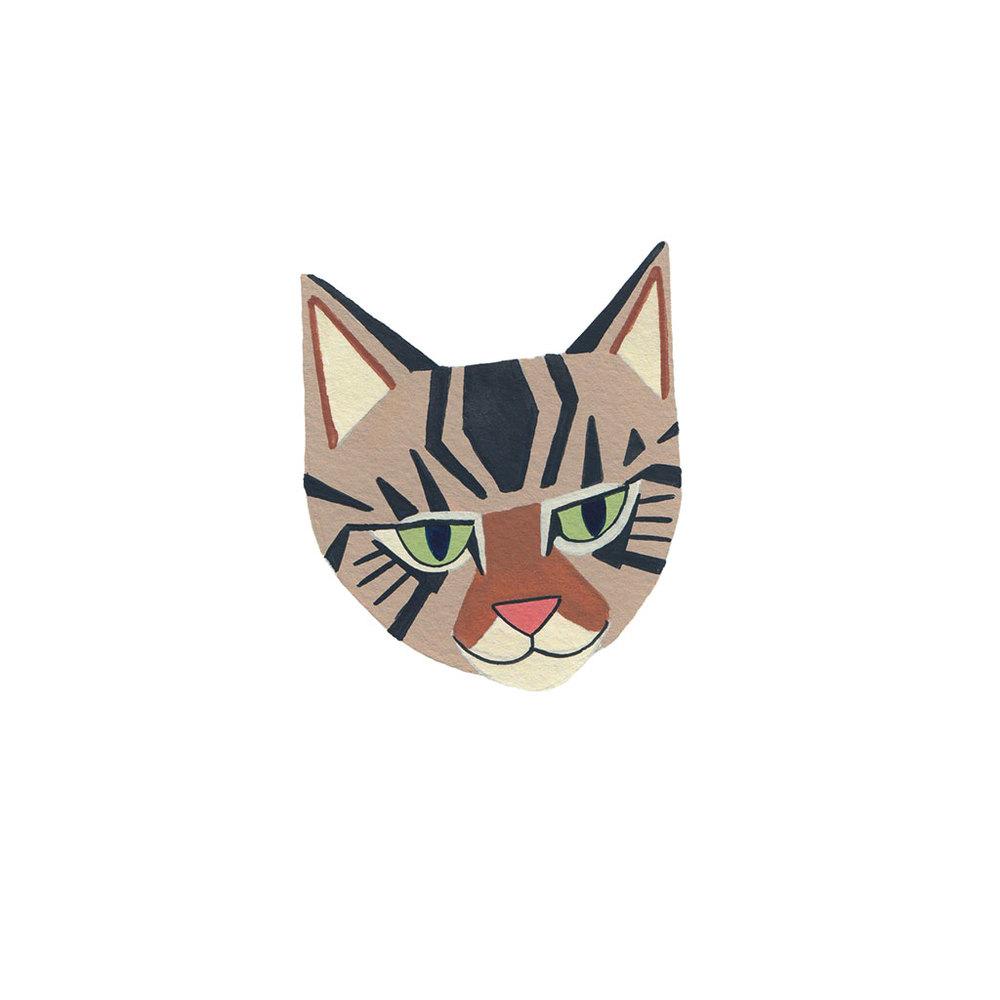 <i>Tabby Cat</i>
