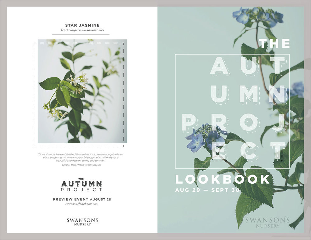 swansonslookbook-1.jpg