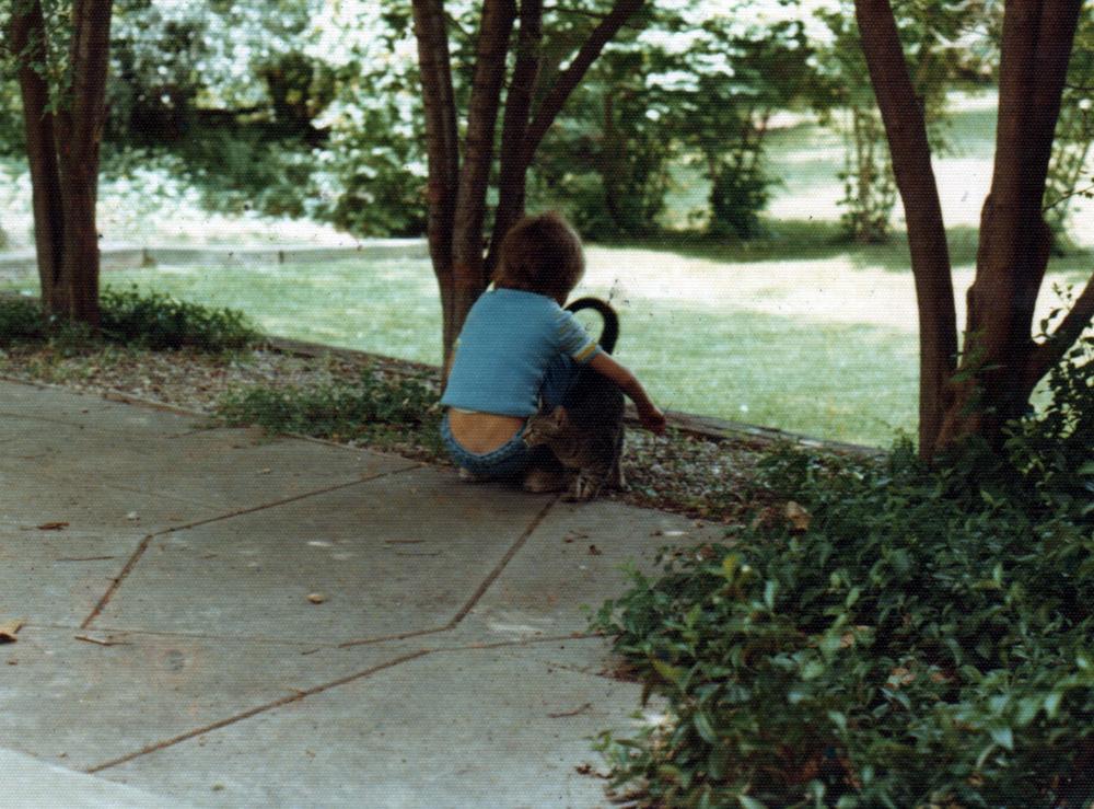 Pricewoods Backyard II