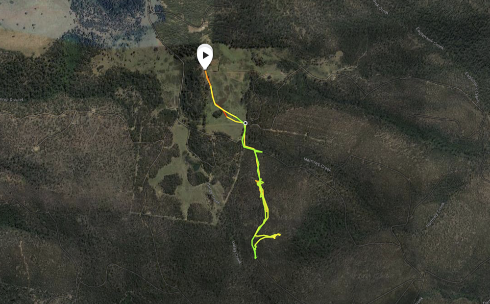 GPS track of my visit to MM012E from home and back on foot.