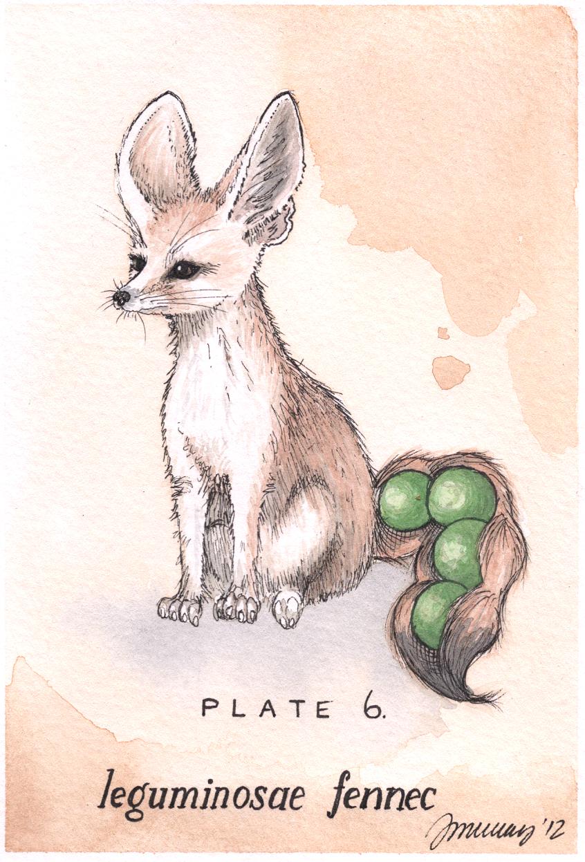 foxcrop.jpg