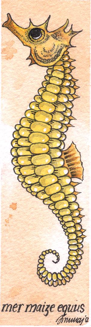 seahorsecrop.jpg