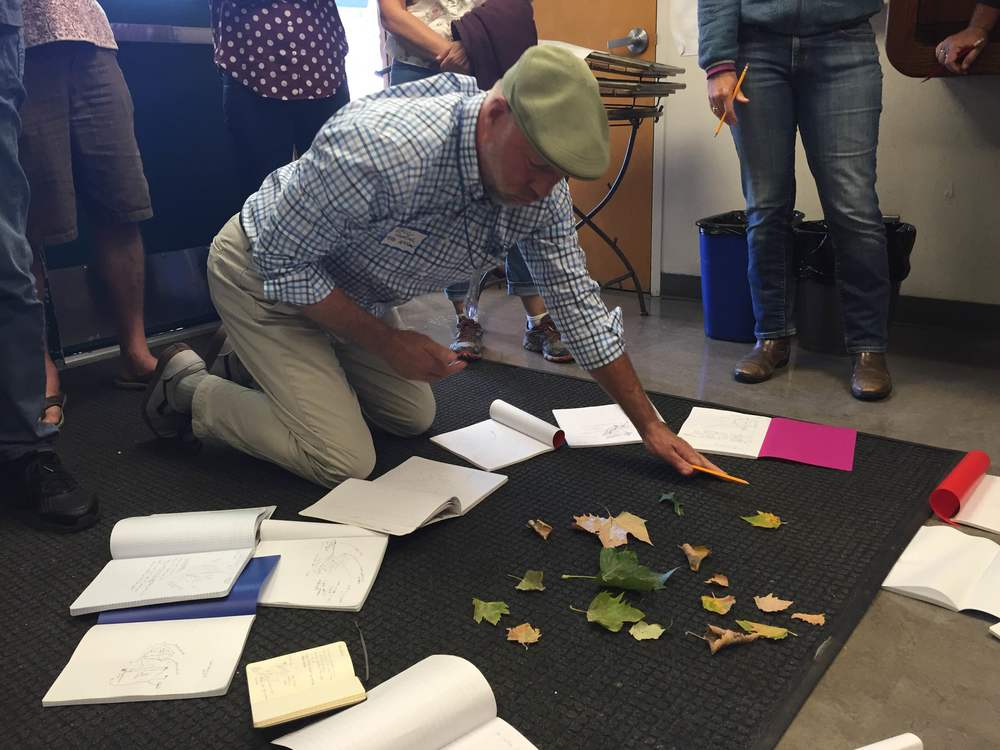 McNear Elementary teacher Eric Norstad plays a field journaling game, matching leaves to peers' drawings and descriptions.