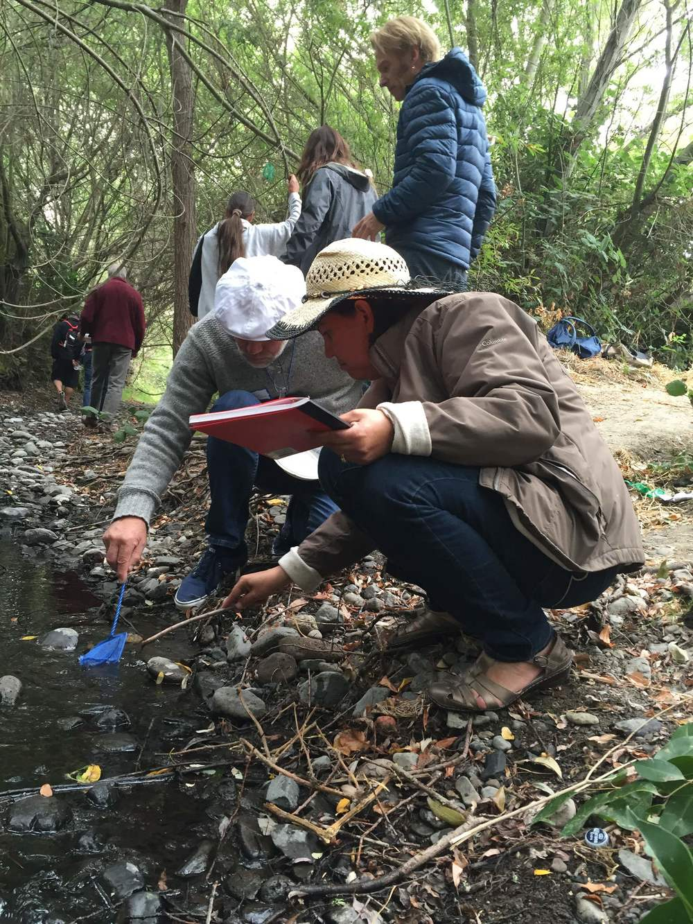 Down at Adobe Creek, teachers are reminded of the joys of critter catching.